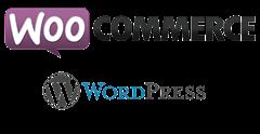 Online sales - Woo Commerce | DaveTavres.com